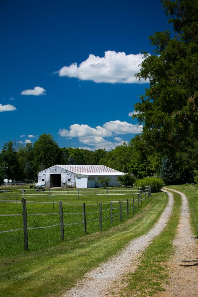 summer farm wedding - Cincinnati